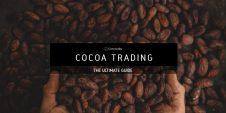 Cocoa-Trading-1024x512.jpg